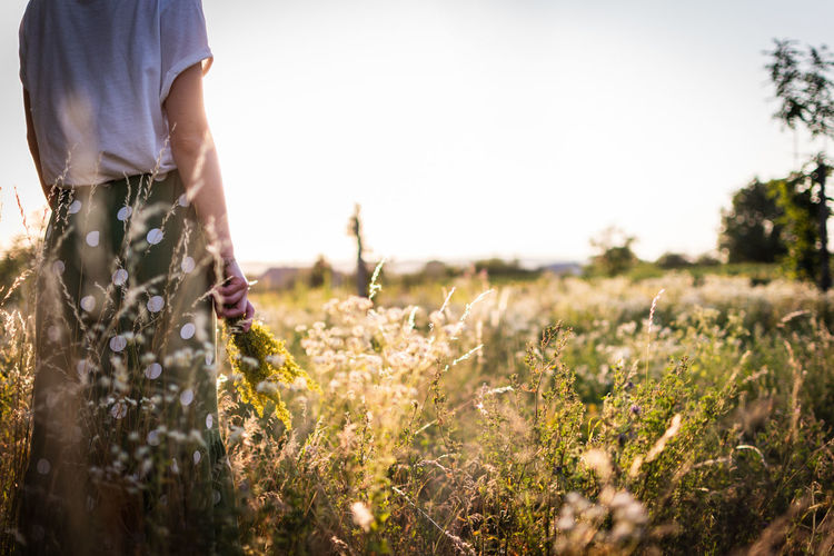 Girl standing in the field, watching a summer sunset