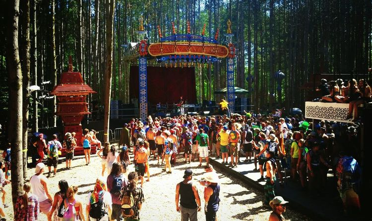 Showcase June Concert Photography Electric Forest Michigan Crowd Forest Music Adventure Summer Festival Season