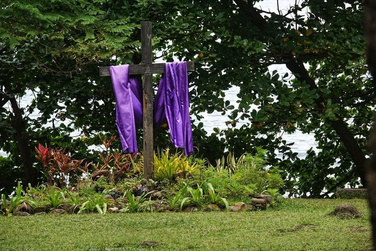 Clothes drying on clothesline in park