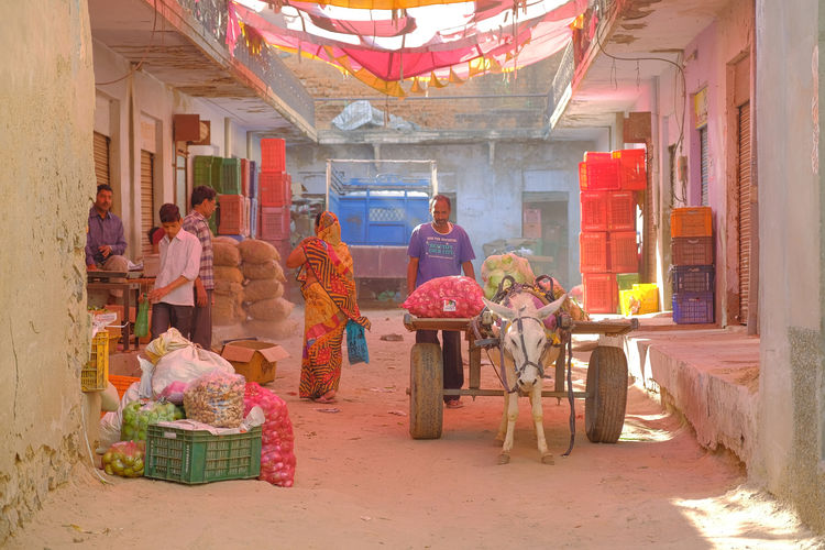 Daily life of streen market in Mandawa, India. Mandawa, Rajasthan Adult Architecture Building Exterior Built Structure Container Day For Sale Full Length Group Group Of People Mandawa Market Medium Group Of People Men Outdoors People Real People Retail  Sitting Small Business Women