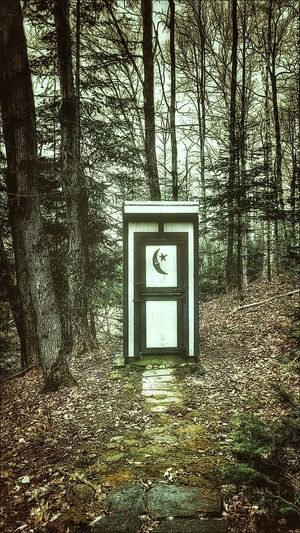 Outhouse Taking Photos Check This Out The Essence Of Summer Outside Photography The Great Outdoors - 2016 EyeEm Awards In The Middle Of Nowhere Building Exterior The Architect - 2016 EyeEm Awards In The Forest Feel The Journey On The Way Hidden Gems  Miles Away The Secret Spaces Let's Go. Together.