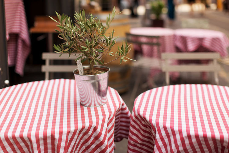 Street cafe at Aix-en-Provence Cafe Arrangement Food And Drink Greenery Leisure Time No People Selective Focus Street Table Tablecloth