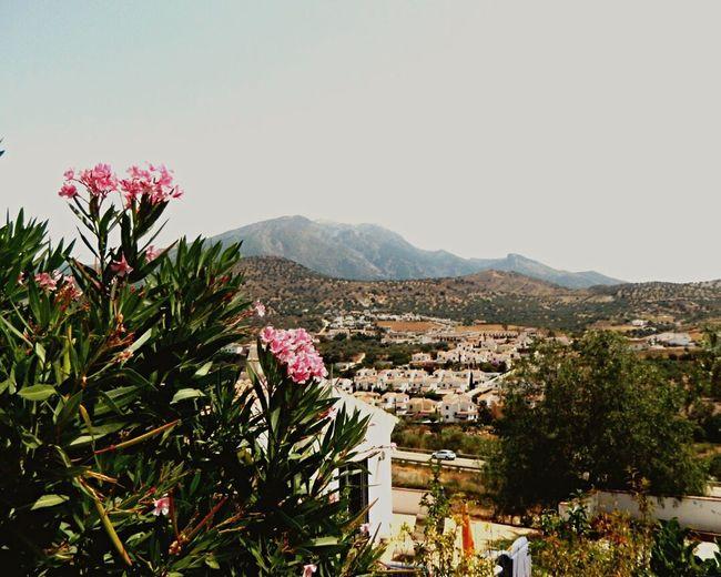 Views Maroma Mountain