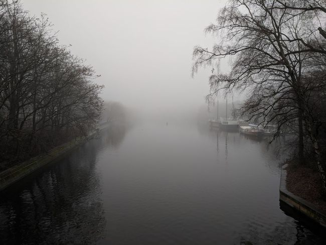 Urbanhafen immersed in the fog // Water Fog Foggy Nature Tranquil Scene Tranquility Beauty In Nature Reflection Tree Mist Lake Bare Tree Outdoors Scenics No People Cold Temperature Waterfront Winter Day Hazy  Sky Google Pixel F/2.0 via Fotofall