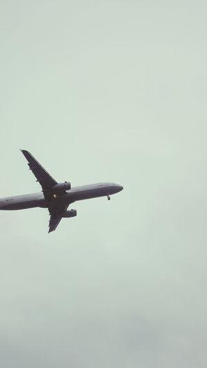 Zum greifen nah /// Flugzeug Luftfahrt Fliegen Urlaub Transportation Public Transportation Urban