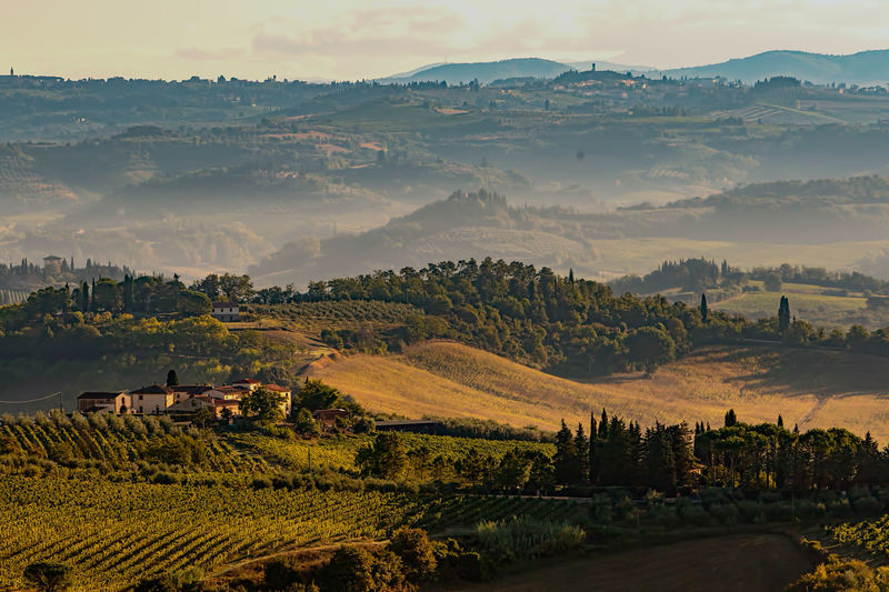 Agriculture Beauty In Nature Beauty In Nature Field Hills Landscape Mountain Nature No People Outdoors Patchwork Landscape Rural Scene Scenics Tranquil Scene Tranquility Travel Destinations Tuscany Tuscany Countryside Tuscany Italy Tuscany Landscape Vineyards  Been There.