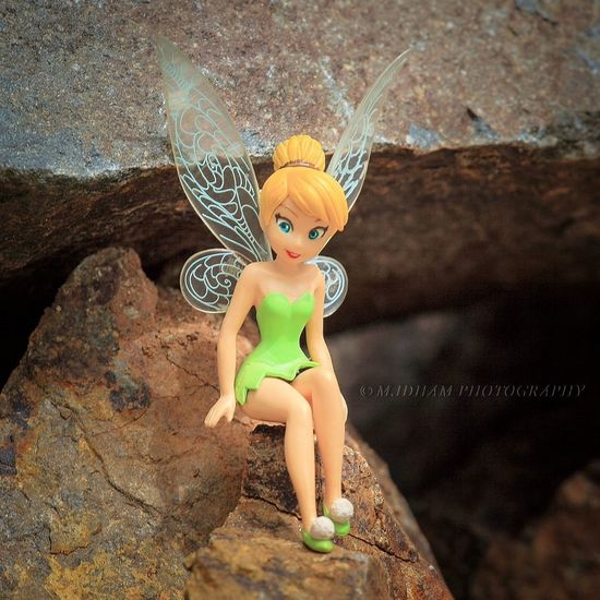 Tinkerbell - sweet sit & smile StillLife Toys EyeEm EyeEm Indonesia