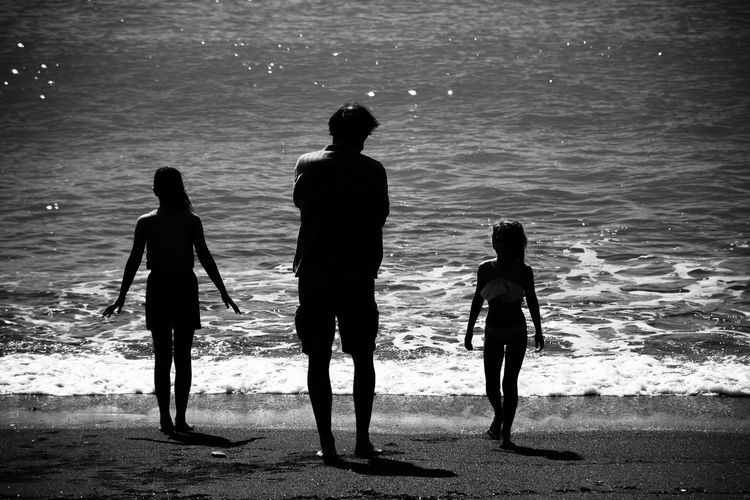 Rear view of silhouette people on beach