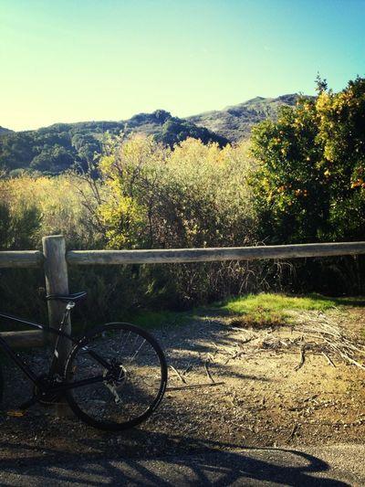 Todays Bike Trail
