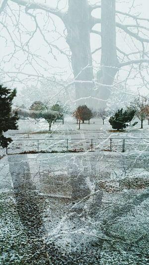 Snow ❄ New Mexico Winter Wonderland Imagesspeaklouder Burgers Albuquerque