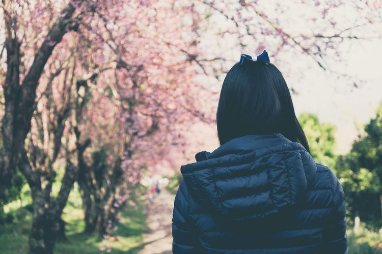 Asian girl watching cherry blossom in the garden. (vintage tone) Beauty In Nature Cherry Blossom Cherry Tree Day Flower Flowering Plant Focus On Foreground Growth Hairstyle Hood - Clothing Leisure Activity Lifestyles Men Nature One Person Outdoors Plant Real People Rear View Springtime Standing Tree Waist Up Warm Clothing