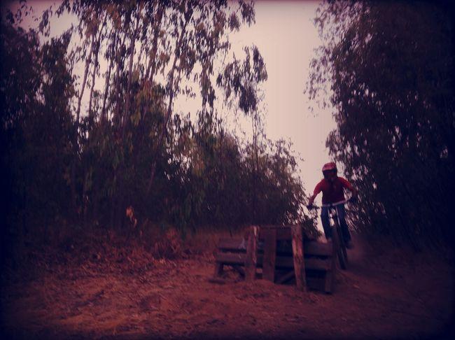 downhill at Cooperativa Vitivinicola Loncomilla Downhill