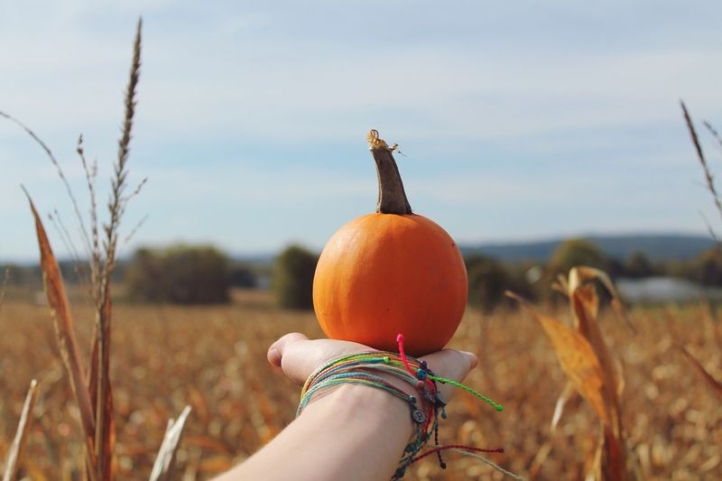 Close-up of woman hand holding pumpkin on field against sky