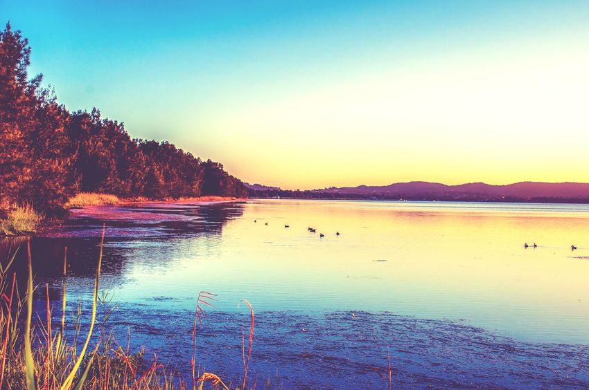 Water Reflection Lake Mountain Sunset Sky Beauty In Nature Nature Scenics Outdoors No People Blue Day Bird