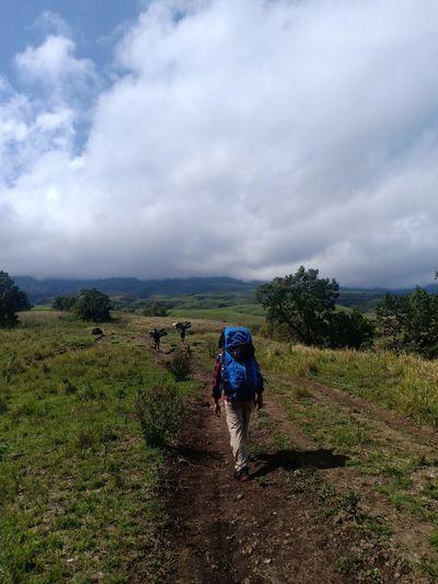Rear view of woman walking on trail