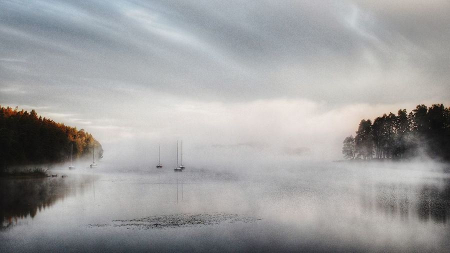 Sailboat Water_collection EyeEm Nature Lover Sweden Water Reflections Fog Over Water Misty Morning Fall Beauty EyeEm Best Shots