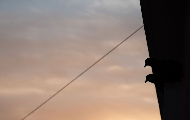 Low angle view of silhouette pole against sky at sunset