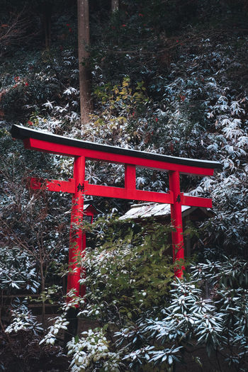 Red metal structure in park during winter