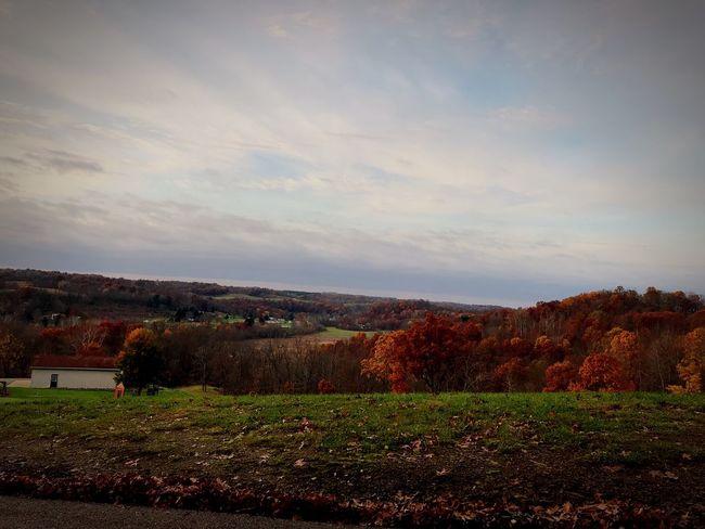 Landscape Fall Beauty