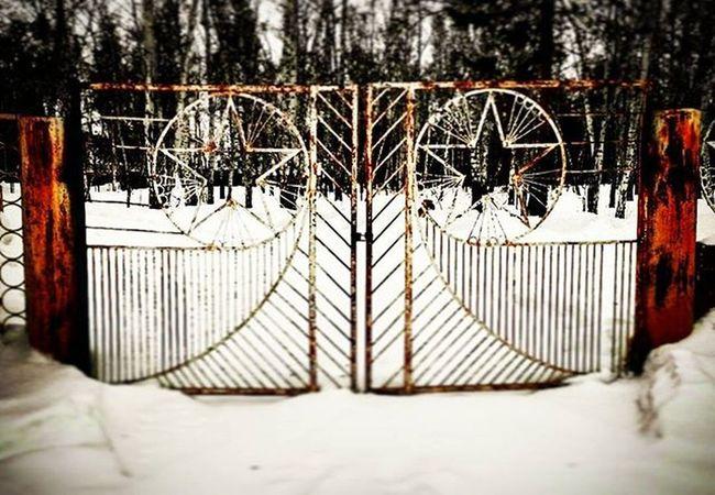 Фото на конкурс мобиларт омск сибирь русскийлес ворота звезда  Omsk Siberia Gate Stars Winter Wood