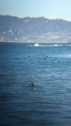 Enjoying the ocean Surfing Ocean Ocean View Nature Mountain