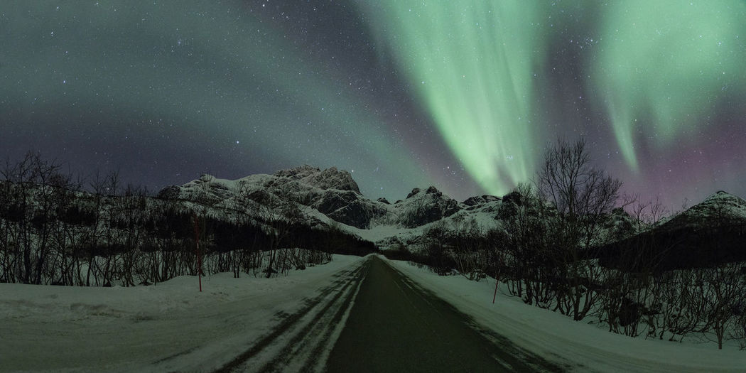 It took us three attempts to catch the northern lights above this particular road, but once we were lucky, we were really lucky and the whole sky was glowing. The lights were moving quite fast that night and danced just above us. Nature can be so amazing. This image was stitched together from five shots. Aurora Borealis Lady Aurora Northern Lights Norway Aurora Borealis Norway Aurora Polaris Beauty In Nature Cold Temperature Landscape Lofoten Mountain Nature Night No People Outdoors Road Scenics Sky Snow Street The Way Forward Tranquility Winter