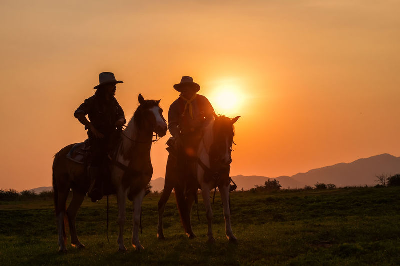 View of horses on field during sunset