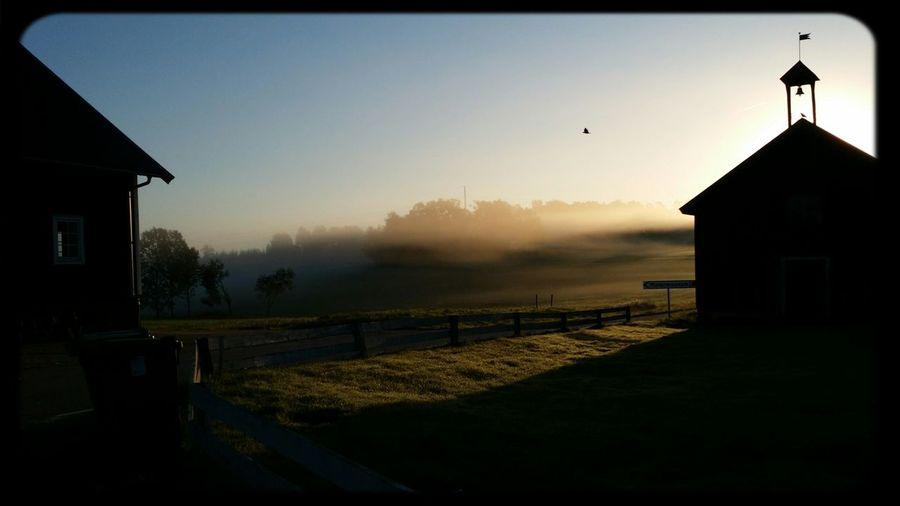 Misty morning Morning Sunrise Enjoying Life