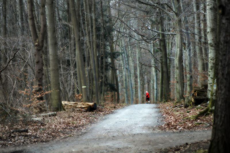 Lonely Runner Old Man Running In The Woods Professionally Dressed Red Shirt Loneliness Melancholic Landscape Trees Forest The Way Forward Nature Cold Atmosphere One Person Real PeopleAdult Beauty In Nature Forest Path City Forest Frankfurt Am Main Germany🇩🇪 The Great Outdoors - 2017 EyeEm Awards The Photojournalist - 2017 EyeEm Awards Live For The Story Investing In Quality Of Life Lost In The Landscape The Great Outdoors - 2018 EyeEm Awards