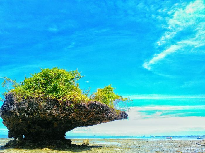 Blue Nature Sky Sea No People Beach Beauty In Nature Outdoors Day Scenics Water EyeEmNewHere Low Angle View Tranquility Nature Rock Formations Rocky Beach Beauty In Nature Cloud - Sky Noon Time