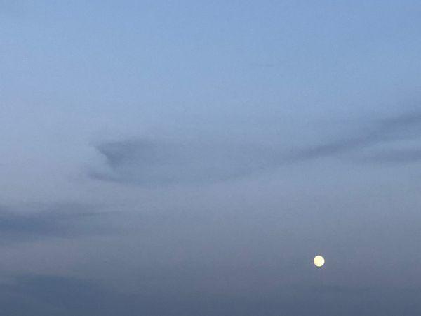 Twilights Moon