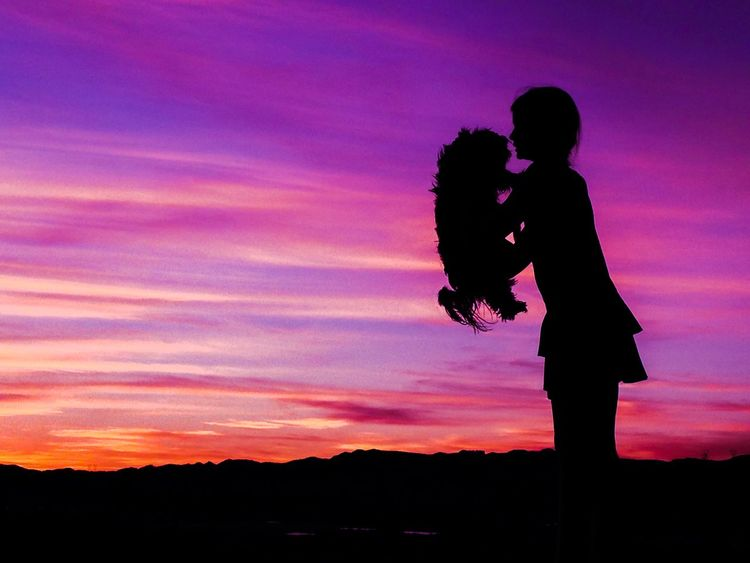 A Girl And Her Dog Sweet Sky Clouds And Sky Silhouette Sunset Silhouettes Clouds Love Enjoying Life Californiagirl
