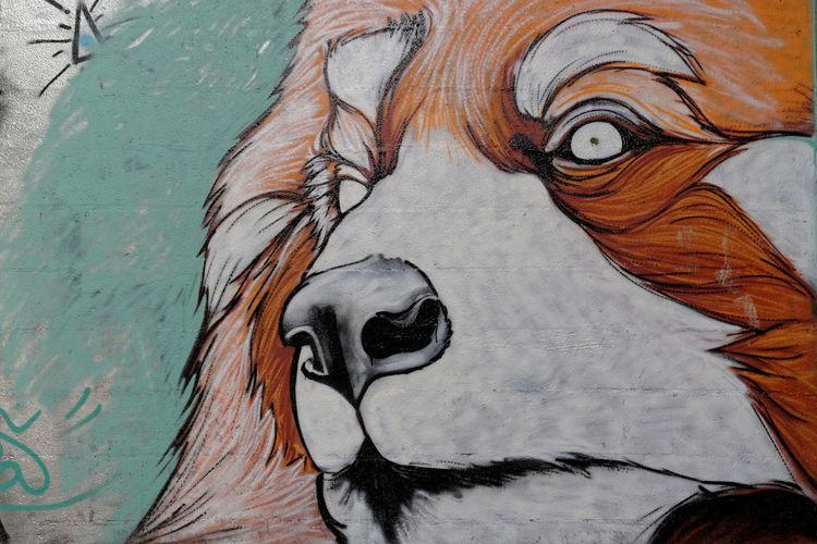 Abandoned Animal Representation Animal Themes Art Chien Cimenterie Close-up Day Dog Epagneul Breton Exploration Graff Graffiti Lafarge Mammal Moth4fok Nature No People Outdoors Tag Tete Urban Urbex BYOPaper! Visual Feast The Street Photographer - 2017 EyeEm Awards The Photojournalist - 2017 EyeEm Awards EyeEmNewHere Place Of Heart EyeEm Selects