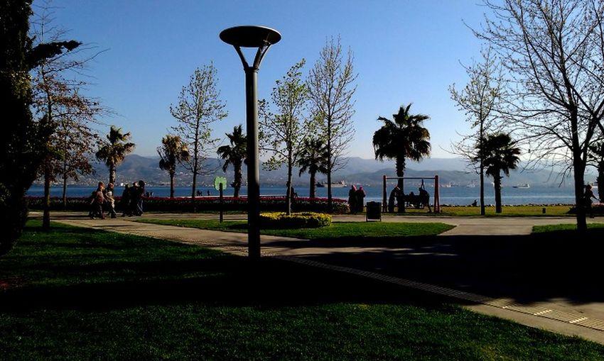 #away From Mountain #Blue #fascinating #green #PeacefulMoment #sea #sky #trees #TURKEY/Kocaeli