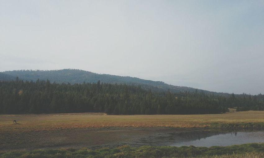 Pond Athol Mountain Sandpoint