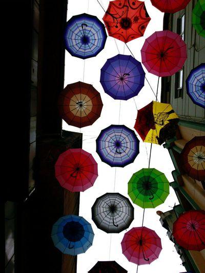 Umbrella Clours şemsiyeler Rengarenk Rize/Turkey Rize Vscocamturkey Vscocamphotos Vscocam