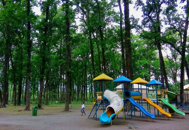 park Park - Man Made Space Parks And Recreation Parkscapes Park Forest Long Trees Greenery Green Color Long Trees Tree_collection  Trees And Nature Tranquil Scene Travel Destinations Tranquility Child Playground Playground Equipment Slips Slide - Play Equipment Slide Photography Tree Outdoor Play Equipment Jungle Gym Canopy Monkey Bars Outdoor Cafe Sunshade Slide - Play Equipment Sun Lounger Beach Umbrella Slide Swing