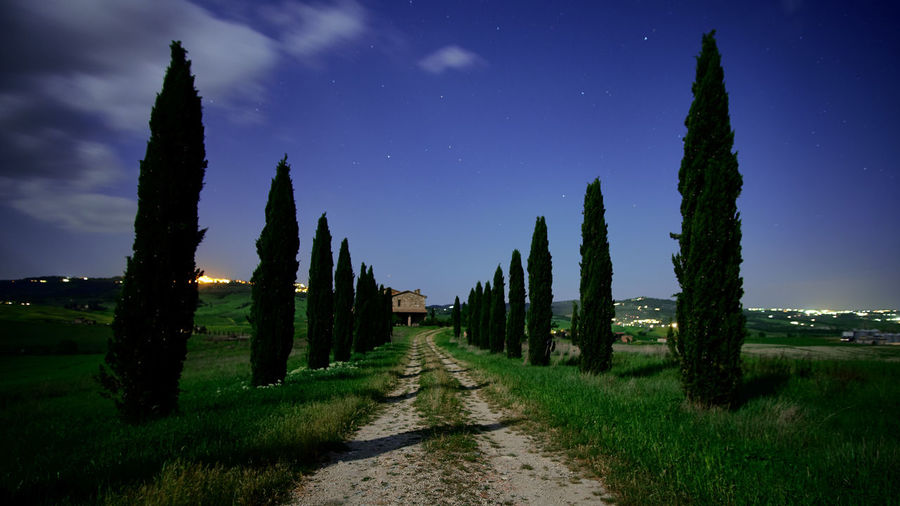 Dirt Road Amidst Trees On Landscape Against Blue Sky At Night