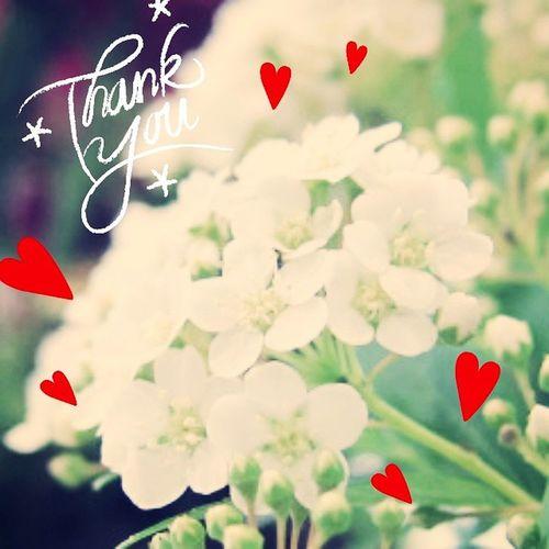 125はなんと。 去年からファンになった 2PM junhoさんのお誕生日~♪ センイルチュッカヘー(*´ω`*) 誕生花はいくつかあったんだけど ストックだって~(*´-`) 花言葉ってよく見ちゃうんだけど、 愛の絆、豊かな愛、永遠の恋、見つめる未来、平和、思いやり だって。 花言葉って色々あるから良いよね。 お花も美しいけれど、花言葉の意味も美しい。 たまには、誕生花や花言葉調べてみよう~♪ 생일축하해 2pm Junho HappyBirthday 誕生花 ストック 花言葉 美しい