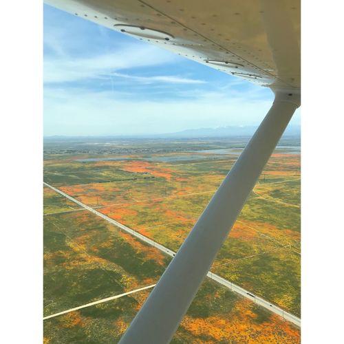 Landscape seen through airplane window