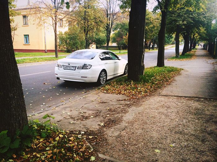 My Love❤ Bmw White👑 Minskcity  Grushevka