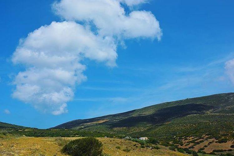 Tunisia IgersTunisia Wletn2016 Wle2016 Sky Clouds Wikilovesearth إشارات جبلية :) زعمة فيه زنديانات غادي ؟ نهارنا فل :) يا ربي لعمال عليك :)