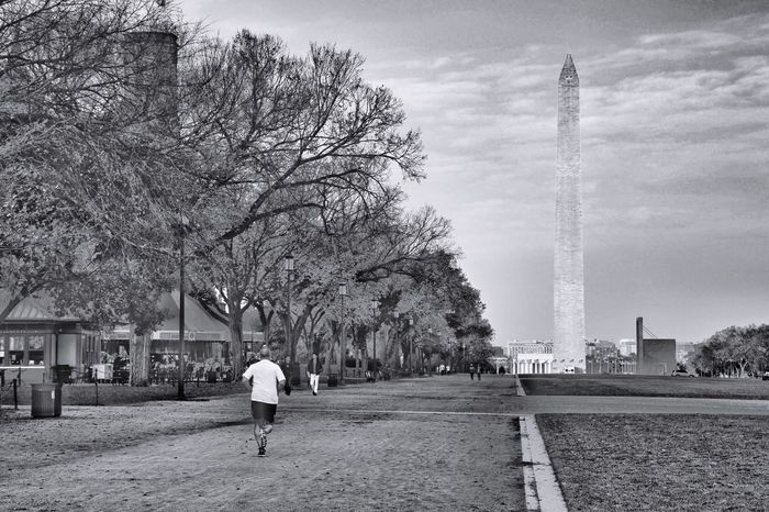 Sunrise on the Washington, DC Mall looking west. Real People Architecture Built Structure Rear View Tree Men Leisure Activity Lifestyles Outdoors Travel Day Travel Destinations Sky One Person Building Exterior Nature People Adult Washington, D. C. JGLowe City Washington Monument Runner Running
