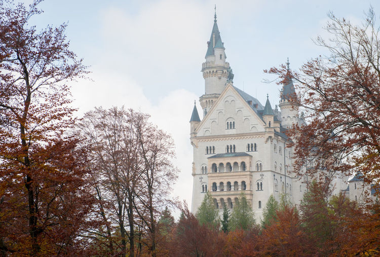 Neuschwanstein Castle with Autumn colors, Fussen, German Tree Architecture Plant Building Exterior Built Structure Sky Building Tower Nature Low Angle View Place Of Worship Religion Belief Spirituality Day No People Autumn Travel Destinations Change Outdoors Spire