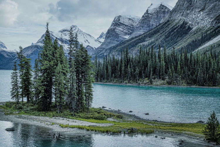 Alberta, Canada Beauty In Nature Cloud - Sky Day Glacial Lake Growth Maligne Lake MaligneLake Mountain Nature No People Outdoors Scenics Sky Spirit Island Tranquil Scene Tree Water