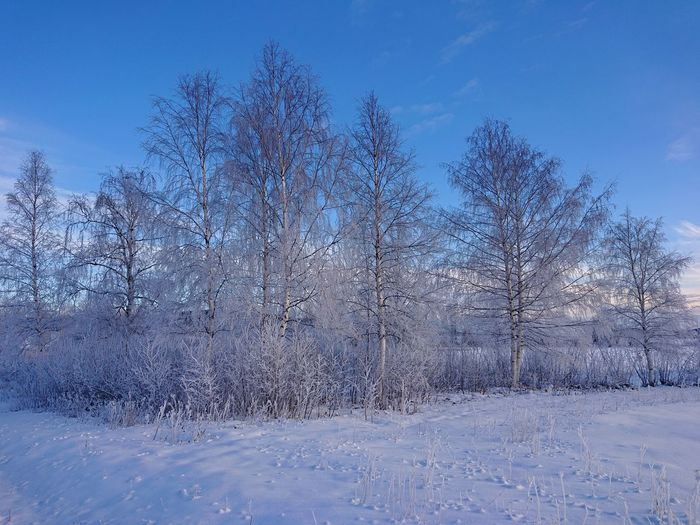 Snow on field against sky during winter