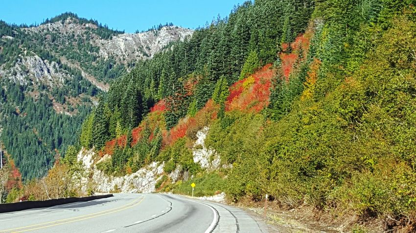 Fall Beauty Roadtrip Driving Fall Colors Mountain View EyeEm Nature Lover Washington Red On The Road Green Scenic Drive Landscape_photography Fall_collection Landscapes With WhiteWall