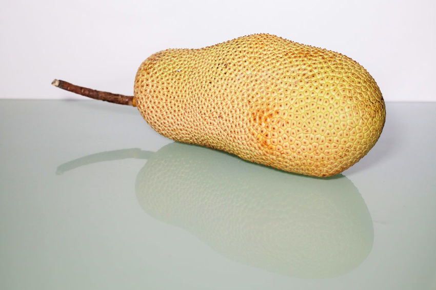 Unripe Artocarpus Integer or known as breadfruit or jackfruit Breadfruit Close-up Day Food Food And Drink Freshness Fruit Healthy Eating Indoors  Jackfruit Jackfruits Nature No People Studio Shot Unripe Unripe Artocarpus Unripe Fruits White Background
