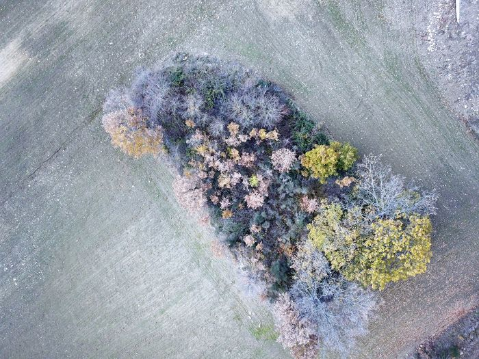 Aerial View High Angle View No People Day Outdoors Nature Mountain Tree