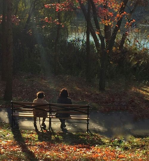 At Oakland Lake, Queens, NY IPS2015Fall Nature Iphonephotoacademy Iphonephotography NYC Candid People Bench Park Oakland Lake IPhoneography Iphone6 Sun-rays Streetphotography